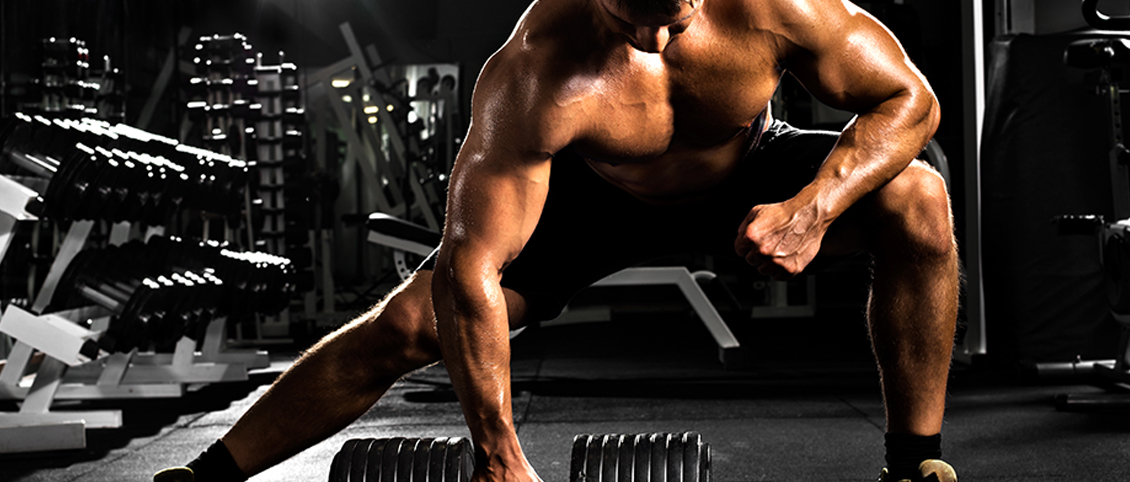 male bodybuilding workout